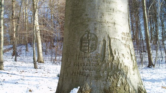 De Ungarske Træer