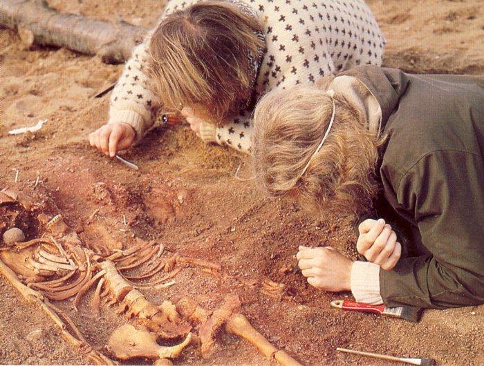 gravende arkæologer