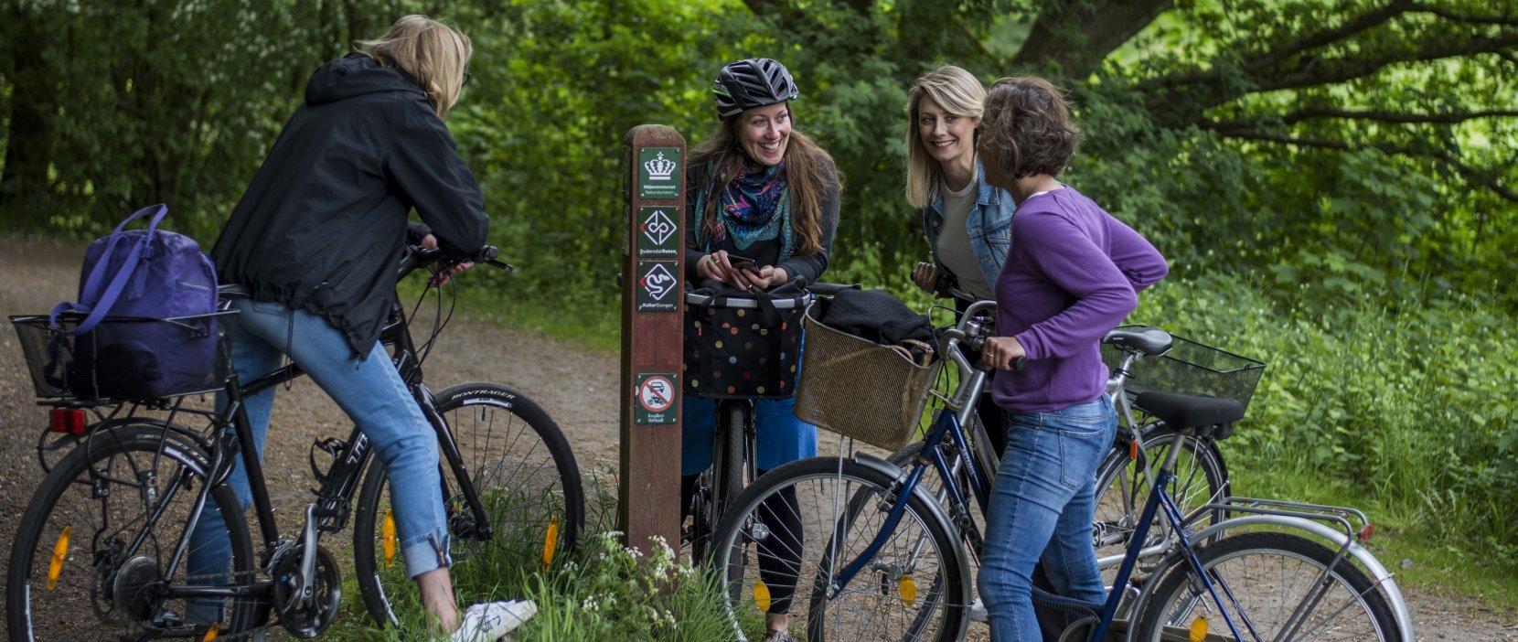 foto af brugere af kulturslangen på cykel