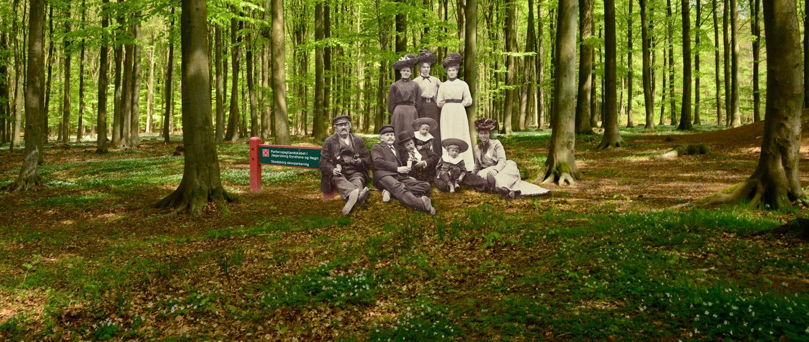 Kongens skov Folkets skov plakat